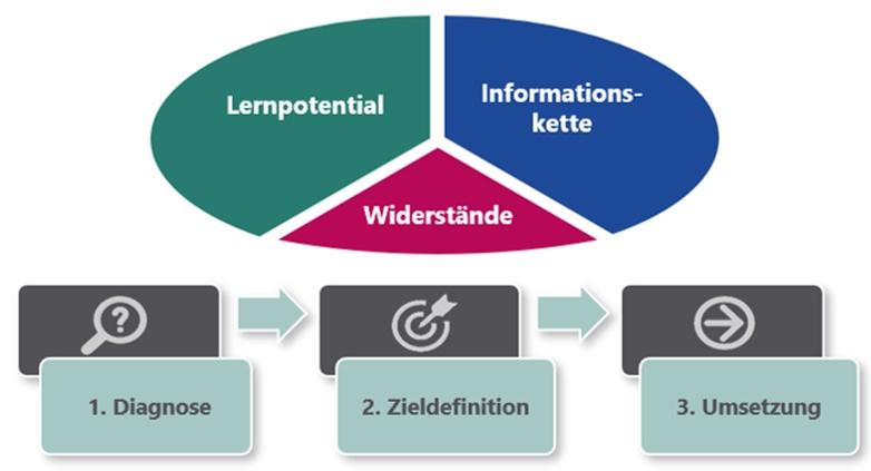Systemischer Ansatz in der Organisationsberatung